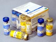 Эурикан DHHPPi+L 2 фл.(1доза) Вакцина «Эурикан DHPPI2-L» Иммунизация собак против чумы плотоядных, парвовирусного энтерита, гепатита, парагриппа и лептоспироза