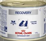 ROYAL CANIN Рекавери 0,195 кг кошки / собаки В ПЕРИОД АНОРЕКСИИ или ВЫЗДОРОВЛЕНИЯ - АВСТРИЯ