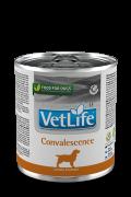 Farmina Vet Life Convalescence - полнорационный диетический влажный корм для взрослых собак в период выздоровления. Диета назначается для пациентов в период восстановления после перенесенных заболеваний.