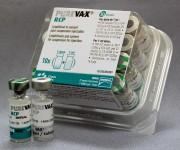 Пуревакс RCP вакцина против панлейкопении, инфекционного ринотрахеита и калицивирусной инфекции кошек
