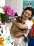 Гомонова Олеся Васильевна - Ветеринарный врач Фармацевт (Специализация: Фармацевтика)