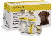 В-на Нобивак L4, 1 доза, Иммунизация против  лептоспироза собак (нового поколения) вакцина Нобивак L4 в три раза эффективнее вакцины предыдущего поколения Нобивак Lepto
