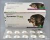 Дехинел Плюс XL для собак крупных пород, блистер 12 таб. Антигельминтный препарат для собак на основе фебантела, пирантела и празиквантела, 1 табл / 35 кг.